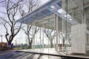 Прозрачное здание ОГА