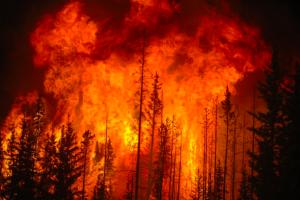 Бурятия в огне